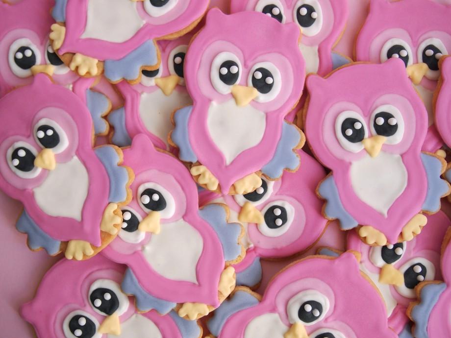 Biscoitos Decorados Corujas 01-min