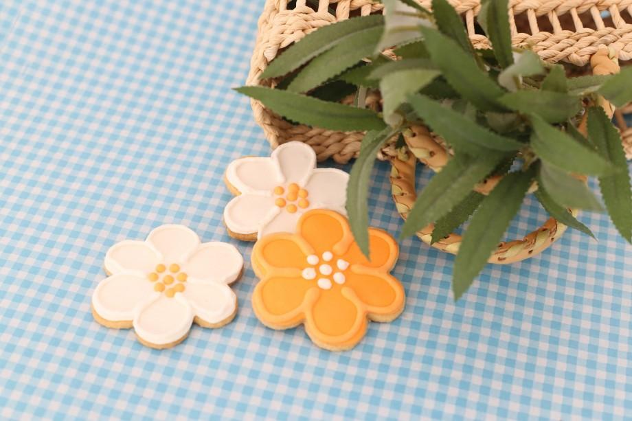 Biscoitos Decorados Passaros e Flores 03-min